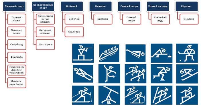 Все о видах спорта
